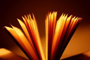 Lima Alasan untuk Kumpulkan Quotes Favorit