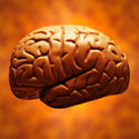 120 Ways to Boost Your Brain Power